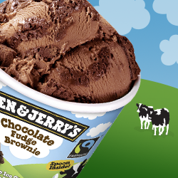 Ben & Jerry's Chocolate Fudge Brownie
